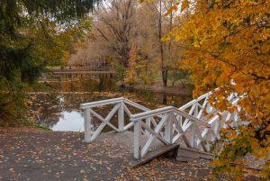 Болдино. Усадьба Пушкина. Верхний пруд. Горбатый мостик