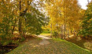 Болдинская осень. Аллеи пушкинского парка. Красивые осенние фото
