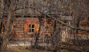 Музей-заповедник А.С.Пушкина. Поздняя осень. Фото