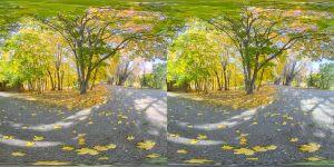 Болдинская осень. Стереоскопическое фото