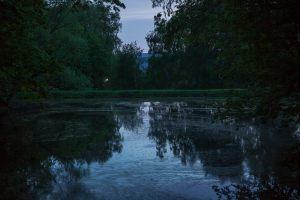 Большое Болдино. Нижний пруд. Вечернее фото усадьбы Пушкина